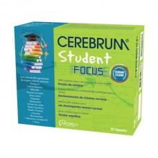 Cerebrum Student Focus 30 Cápsulas